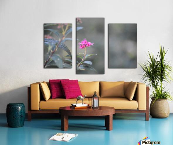 2965 Canvas print