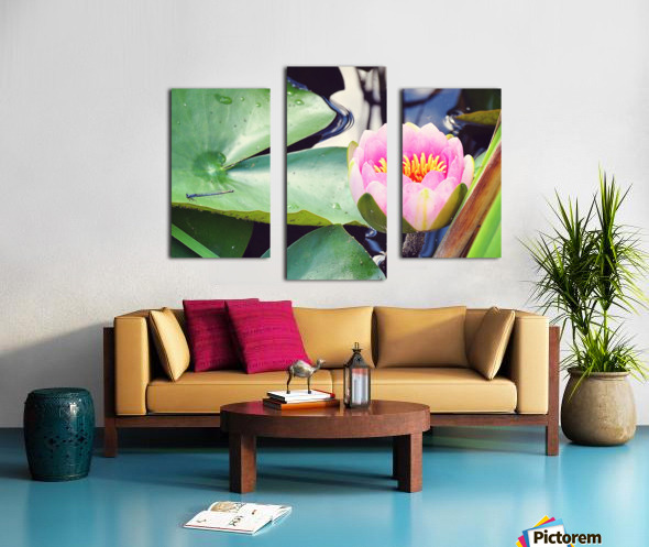 Dragonfly And Lily Canvas print