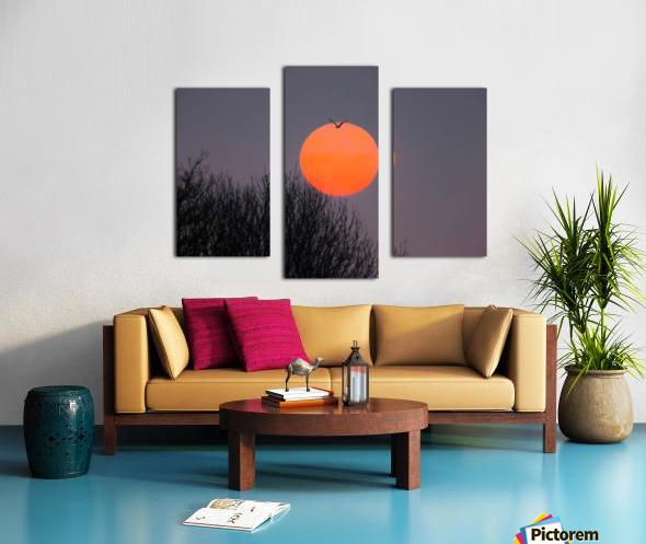 Sunrise lever de soleil Canvas print