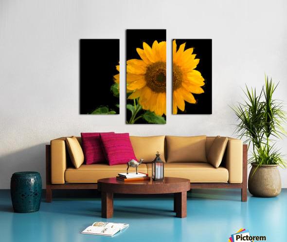 Solitary Sunflower Canvas print