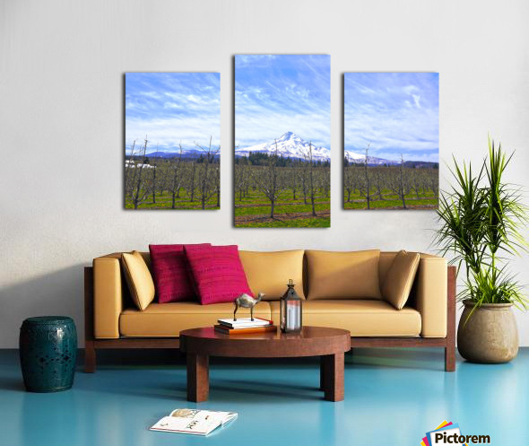 Spring at the Orchards  - Mount Hood - Oregon Canvas print