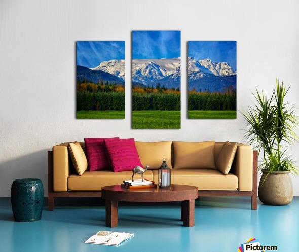 Comox Glacier in Early Spring Canvas print