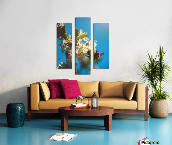 Bumble Cherry Canvas print