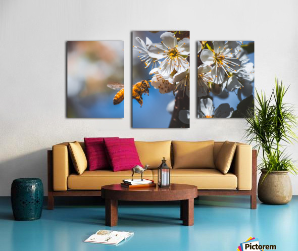 Blossom & The Bee Canvas print