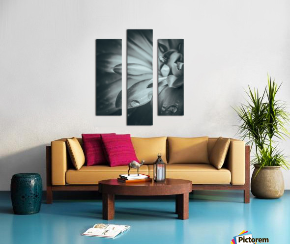 Flowerful Study In A Monochromatic Vibe Canvas print