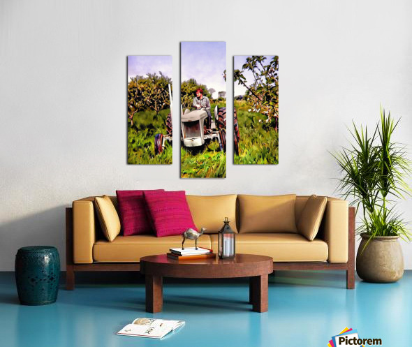 One Man And His Fergie Tractor Canvas print