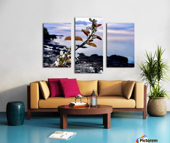 Flower on the Shoreline Canvas print