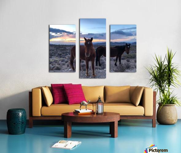 86C760E4 B194 4EB3 A3DB B47F2C02F378 Canvas print