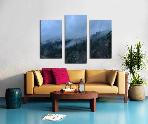 76EB2A53 D340 44C0 82BC E52D62DAB2CB Canvas print