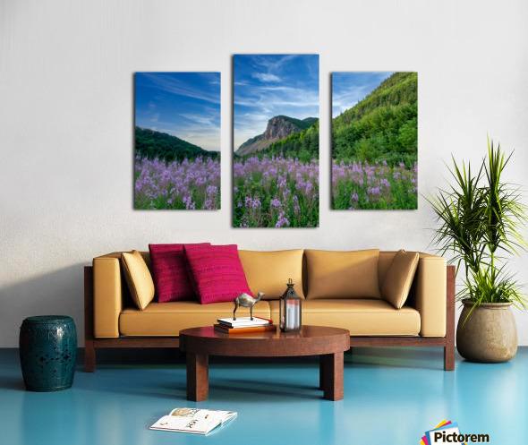 Fireweed at La Grand Falaise Canvas print