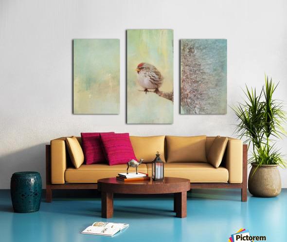 Common Redpoll Canvas print
