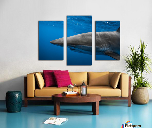Hooked Canvas print