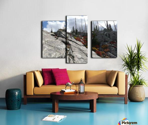 Easy Climb to Grouse Mountain Canvas print
