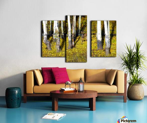 Baby Deer in Old Aspen Trees Canvas print