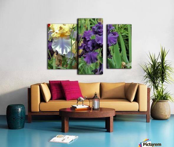 Two Iris Canvas print