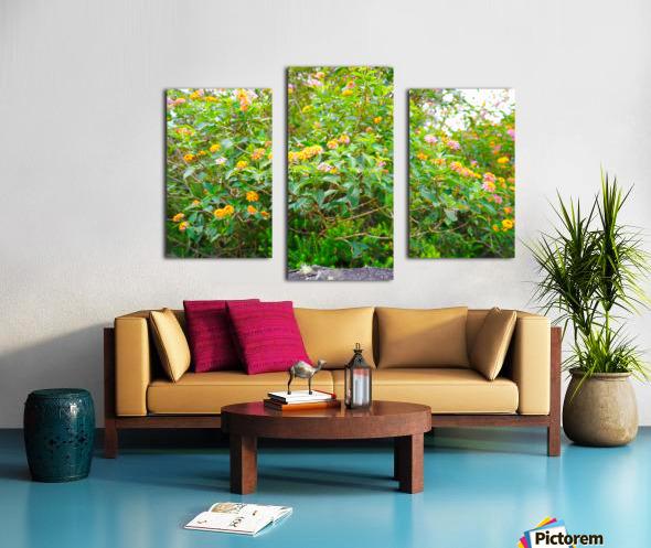 Wild Flowers Waimea Canyon Kauai Canvas print