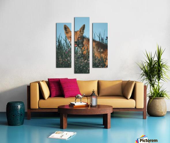 Fantastic Fox  Canvas print