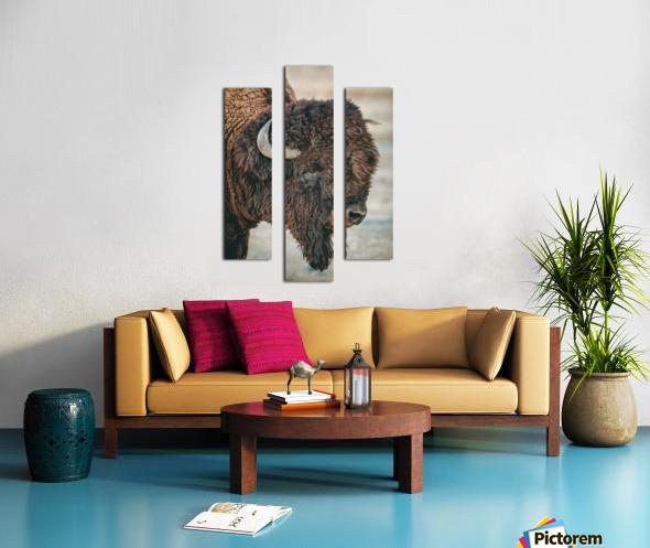 Cut the Bull Canvas print