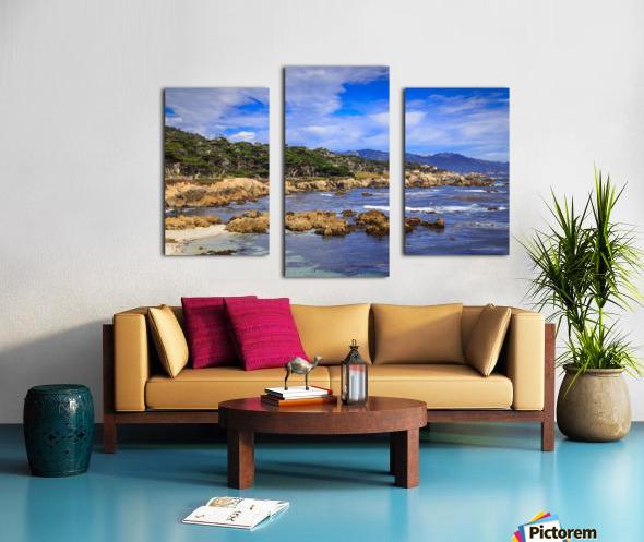 Carmel Coastline Canvas print