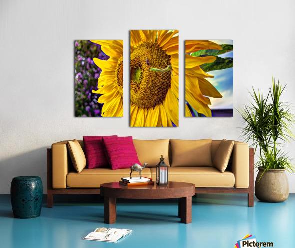 Sunflower Creative Canvas print