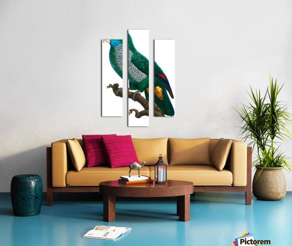 Yellow and Green Parrot Art Print Digital Download Vintage French Bird Illustration Printable Coastal Tropical Wall Art Canvas print