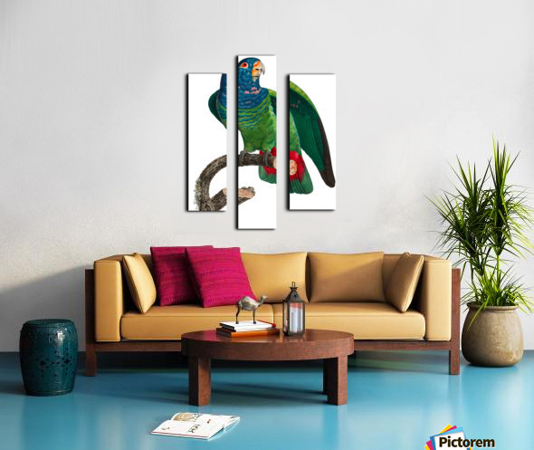 Parrot Print Antique Space Painting Vintage Drawing Poster Wall Art vintage animal parrot photo Tropical Parrot Art  Canvas print