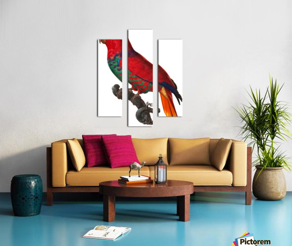 Parrot Print Antique Space Painting Vintage Drawing Poster Wall Art Eclectus Parrot Vintage parrot print Parrot Poster Print  Canvas print