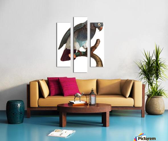 Macaw - Birds - Paradise - Tropical- Art Print - Wall Art - Parrot Canvas print