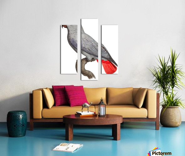 Parrot Print Art Poster with Parrot Parrot Wall Art for Bird Lovers Canvas print