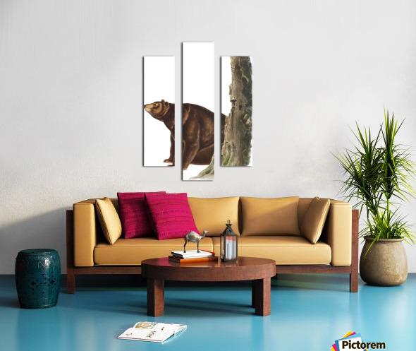 Bear Print Canvas print