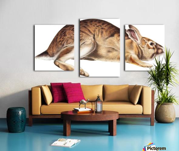 rabbit portrait   pet portrait   custom bunny portrait   custom dog portrait   animal lover gift   gift for her   gift for pet mom Canvas print