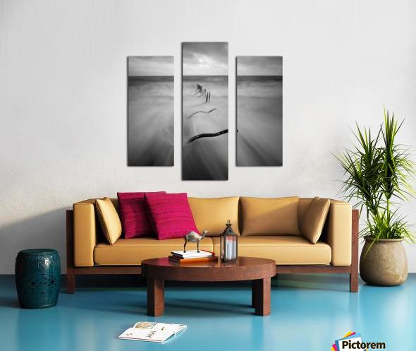 200113  P67 TRI X 002A Canvas print