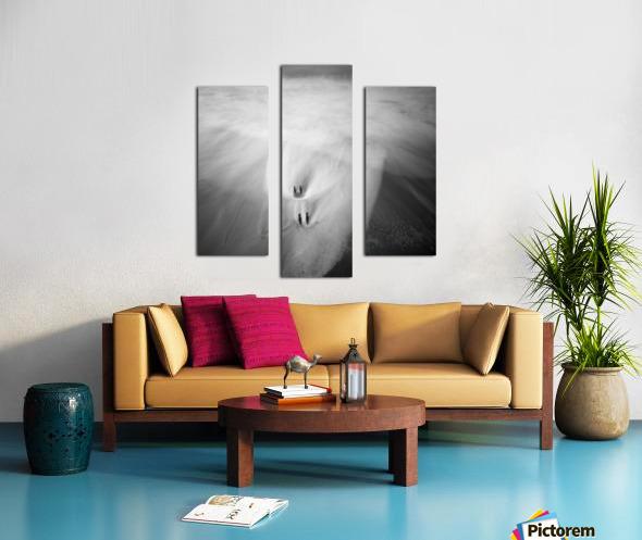 190925 LR66 Panchro400 011A Canvas print