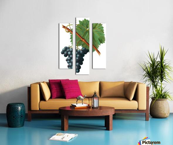 Grape Spanna Antique Art Kitchen Art Grapes Vintage Grapes Pic Grape Vine Grape Leaves Winery Spanna Grapes Wine Blued 02Element 3 Canvas print