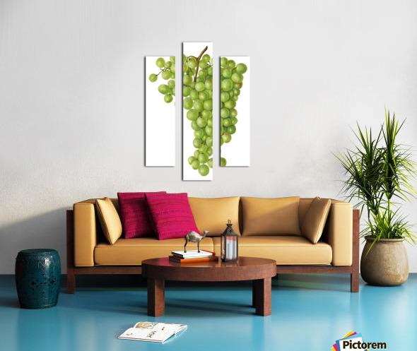 Green Grapes Wall Decor Vintage Botanical Poster Kitchen Art Canvas print