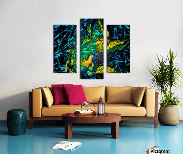 Tangled Transformation 4 Canvas print