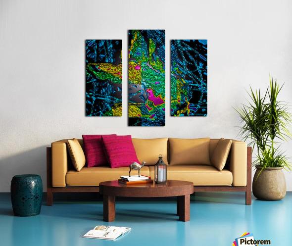 Tangled Transformation 6 Canvas print