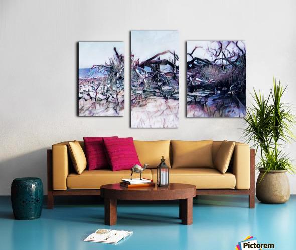 Driftwood Beach Canvas print