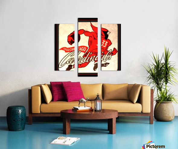 1956 Chicago Cardinals Viewfinder Slide Art Canvas print