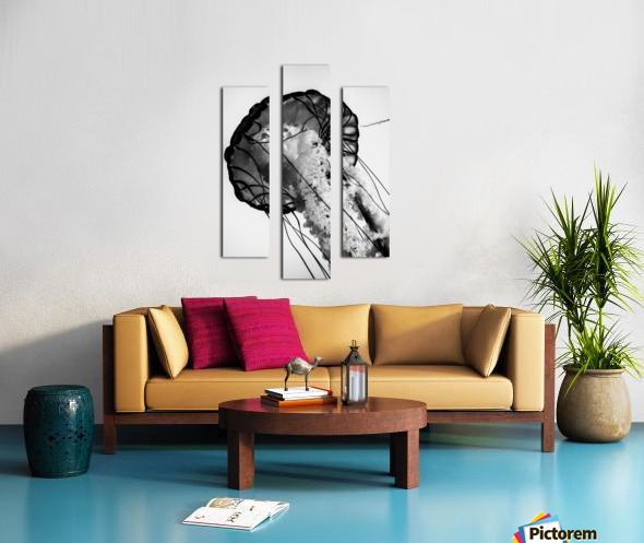 B&W Jelly Canvas print