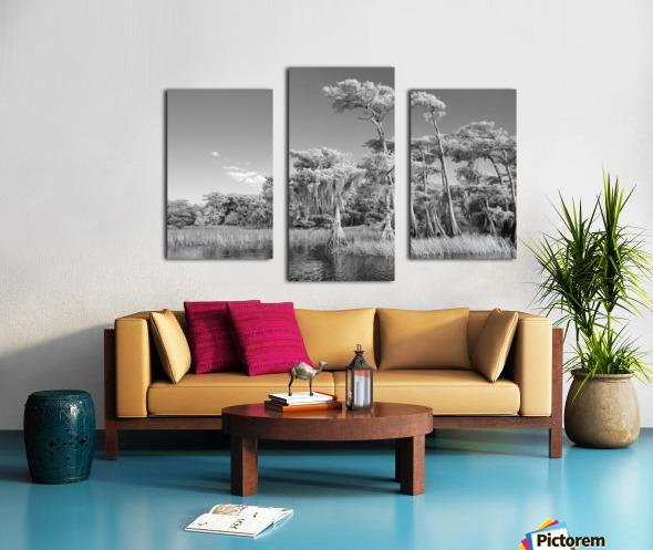Blue cypress trees horizontal Canvas print