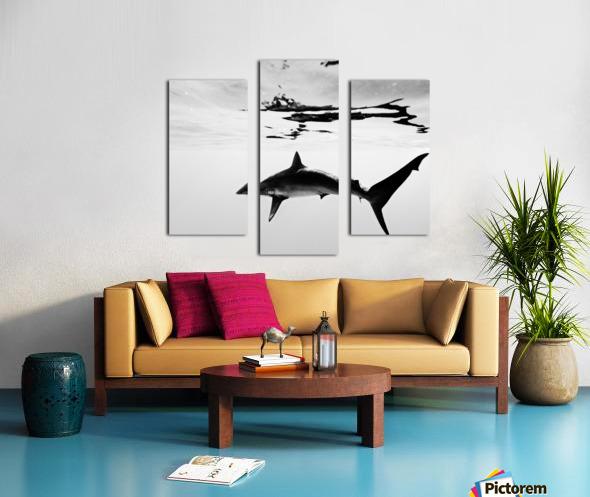 B&W Silky  Canvas print