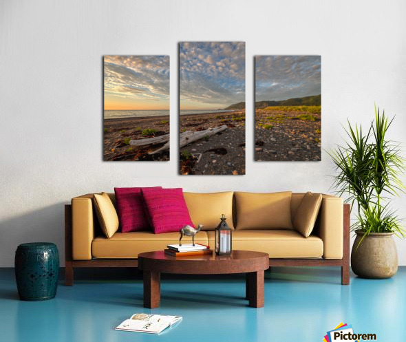 Expressions of Joy Canvas print