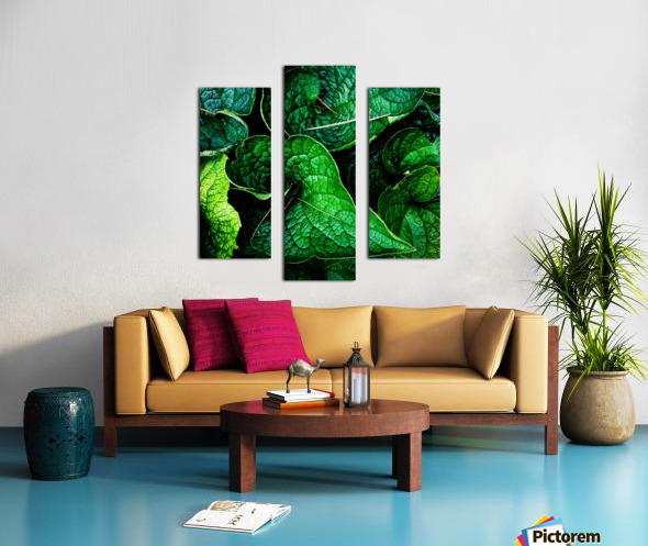 Garden Leaves Canvas print