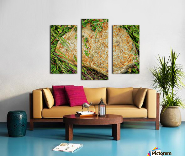 Brown Sandstone Rock With Grass Canvas print