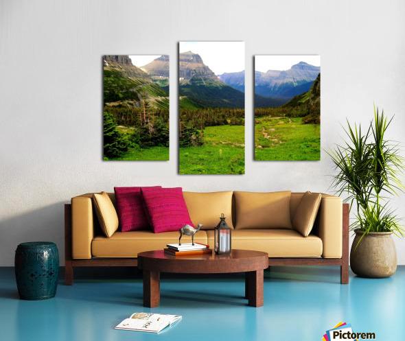 LS021 Canvas print