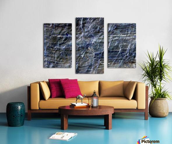RA017 Canvas print