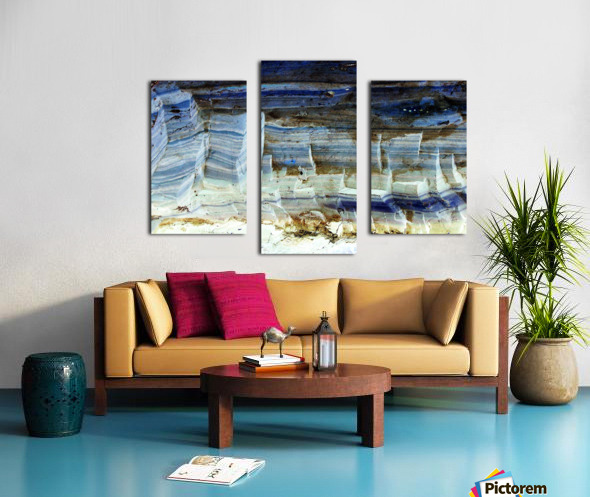 RA029 Canvas print