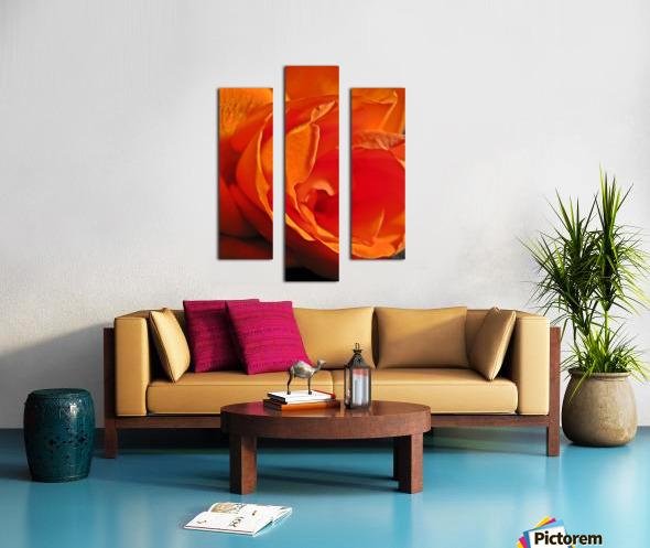 Passion Flower Impression sur toile