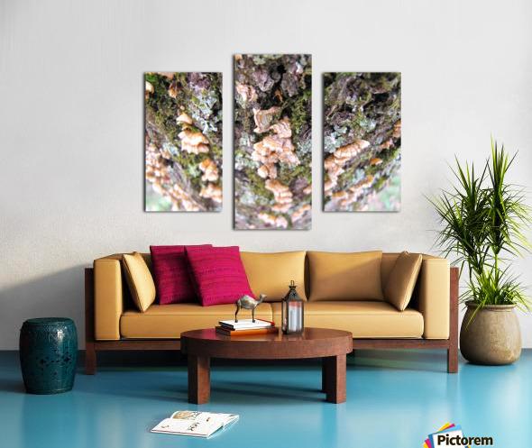 Nature Impression sur toile